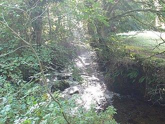 River Rhaeadr - River Rhaeadr near Llanrhaeadr-ym-Mochnant