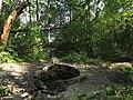 Svyatoshyn ponds spring 01.JPG