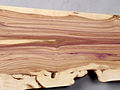 Syringa vulgaris wood 2.jpg