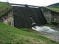 Tama na rzece Morawka PL.jpg