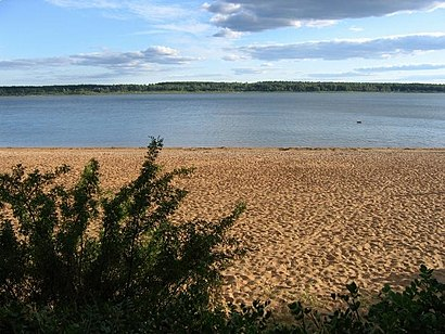 How to get to Tamula Järv with public transit - About the place