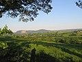 Tan House Farmland - geograph.org.uk - 1332131.jpg