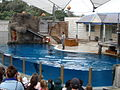 Taronga Zoo (6181961117).jpg
