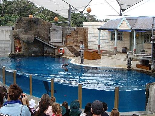 Taronga Zoo (6181961117)
