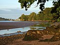 Teign estuary near Netherton House - geograph.org.uk - 548007.jpg