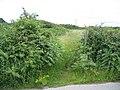 The Anglesey Coastal Path - geograph.org.uk - 490090.jpg