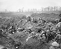 The Battle of the Somme, July-november 1916 Q4014.jpg