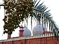 The King's Mosque & Dates.jpg