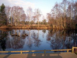 Peatlands Park park in the United Kingdom