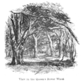 The New Forest its history and its scenery - page 084.png