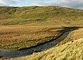 The Rheidol above Nant y Moch - geograph.org.uk - 611351.jpg