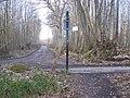 The Wealdway crosses Swanton Road - geograph.org.uk - 1202695.jpg