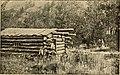 The cattle queen of Montana (1894) (14584458957).jpg