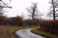 The footpath to Ickford crosses the road to Tiddington - geograph.org.uk - 1727818.jpg