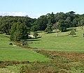 The grass lands - geograph.org.uk - 54733.jpg