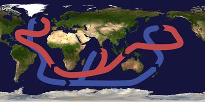 Et simplificeret diagram over det globale thermohaline kredsløb