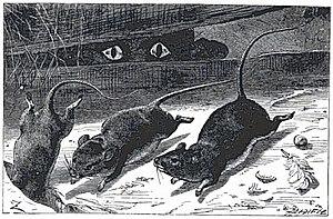 """Johann Baptist Zwecker - """"Three Little Mice"""", from J. W. Elliott, Nursery Rhymes And Nursery Songs, 1870."""