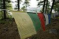 Tibetan Prayer Flags (2485566984).jpg