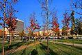 Tirana 11.jpg
