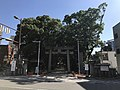 Torii of Sumiyoshi Shrine across road.jpg