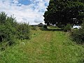 Track to Lawns Farm, Penyard Hill - geograph.org.uk - 508819.jpg