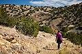 Trail (5350115748).jpg