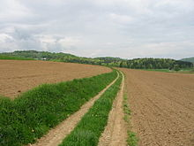 Photograph of a country track or fieldway