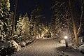 Trail towards Sipoonkorpi at Kuusijärvi, Vantaa, Finland, January 2021.jpg