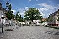 Trauben-Eiche markt Teltow.jpg