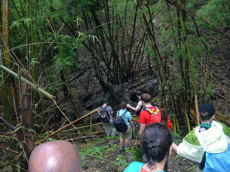File:Trekking in Chiang Rai Province 2007-05 10.JPG