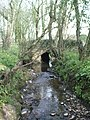 Tributary Stream - geograph.org.uk - 1389808.jpg