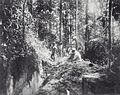 Tropenmuseum Royal Tropical Institute Objectnumber 60000712 Het zoeken naar goudhoudende kwartsri.jpg