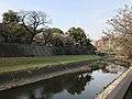 Tsuboigawa River and Long Wall of Kumamoto Castle 2.jpg