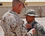 Twelve Task Force Overlord soldiers awarded the Purple Heart Medal 110617-N-IA881-024.jpg