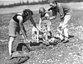 Two women, a child and a dog on the shore, filling a basket with clams, probably Washington State (4724938918).jpg