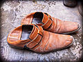 Typical Pair of Shoes (5375107159).jpg
