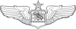 US Air Force Senior Astronaut Observer Navigator Combat System Officer Badge.png