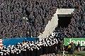 US Navy 041204-N-9693M-002 Opening ceremonies at the 105th Army Navy game.jpg
