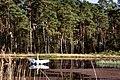Uroczy zakątek - panoramio (1).jpg