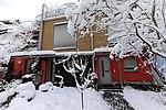 Valentinhaus-Gärten im Winter 04.jpg
