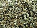 Vermiculite1.jpg
