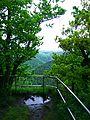 View - panoramio (43).jpg