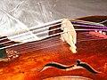 Viola d'amore 1.jpg