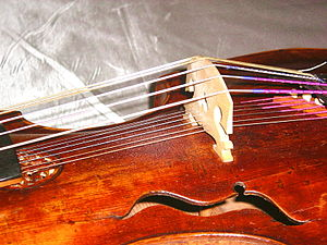 Viola d'amore - The bridge on an early 18th-century instrument, showing both sets of strings.