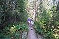 Visitors at Baring Falls (4482107450).jpg