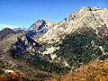 Vivario Monte d'Oro Agnone 22-04-04.jpg