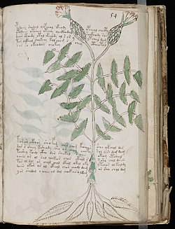 Image illustrative de l'article Manuscrit de Voynich