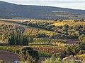 Vue de la campagne de Montauriol, au nord-Est de la commune, depuis le Puig Rabiol.jpg