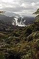 Waimangu Volcanic Valley (6106702423).jpg