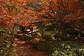 Wakayama Castle Nishinomaru Garden06n4592.jpg